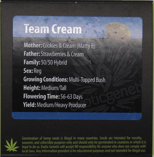 Exotic Genetix - Team Cream (Reg M/F)