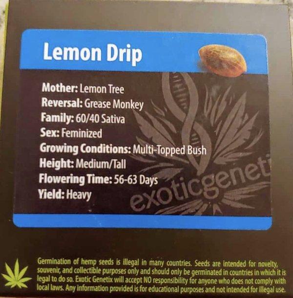 Exotic Genetix - Lemon Drip (Fem)