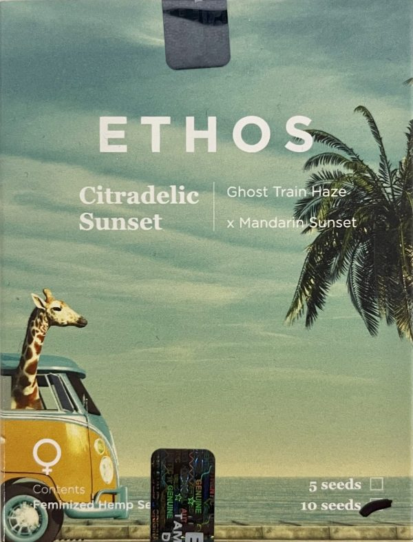 Ethos - Citradelic Sunset