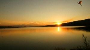 Furnas Reservoir