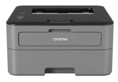 Brother HL-L2315DW Drivers Download