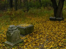 Fall Picture of Bachelor's Grove Cemetery