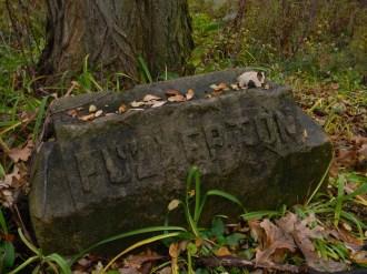 Fullerton - Bachelor's Grove Cemetery