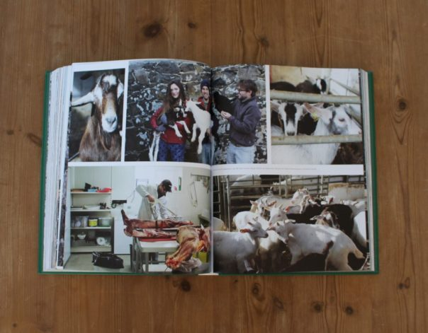 home trish deseine broughgammon farm goat meat ireland