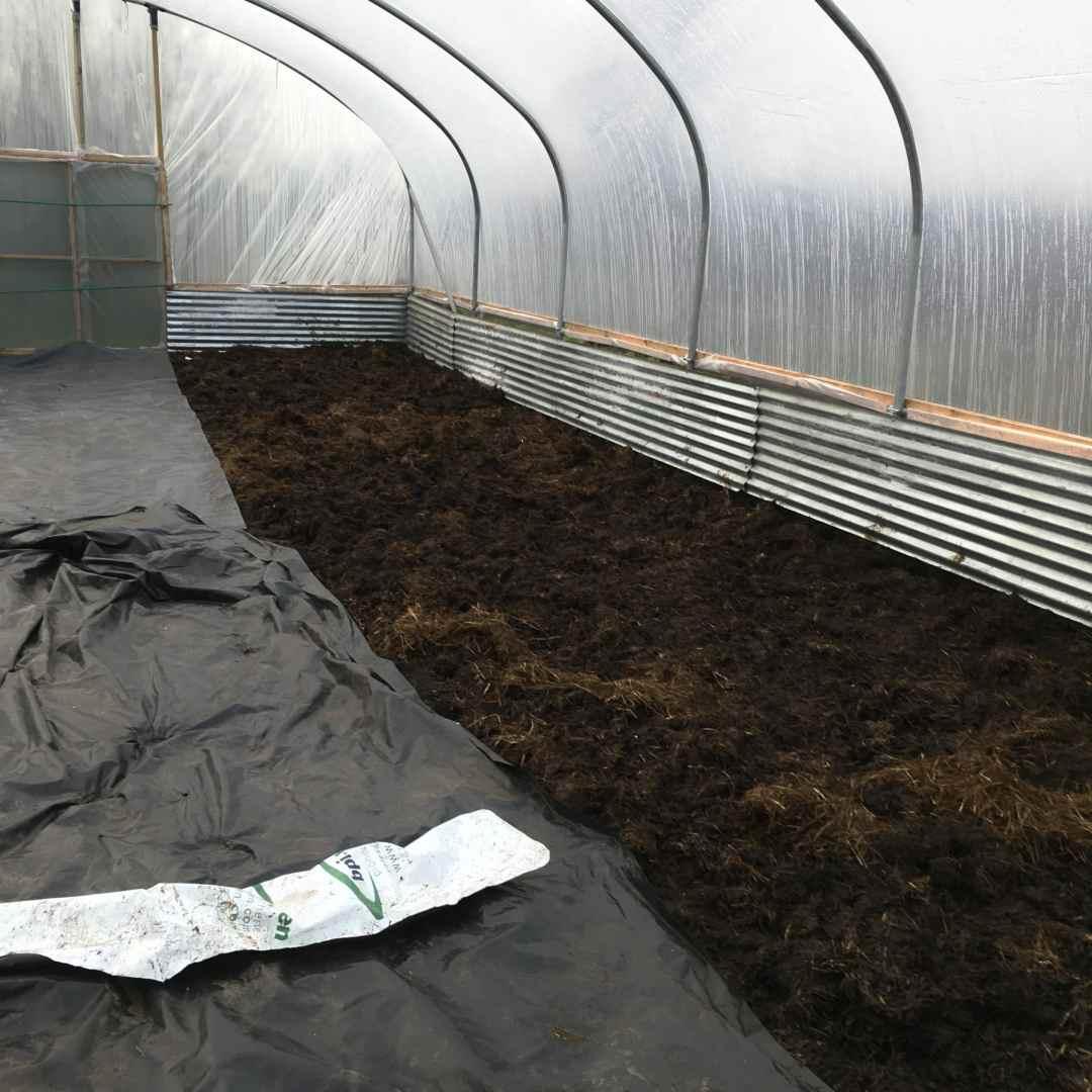no dig gardening charles dowling polytunnel