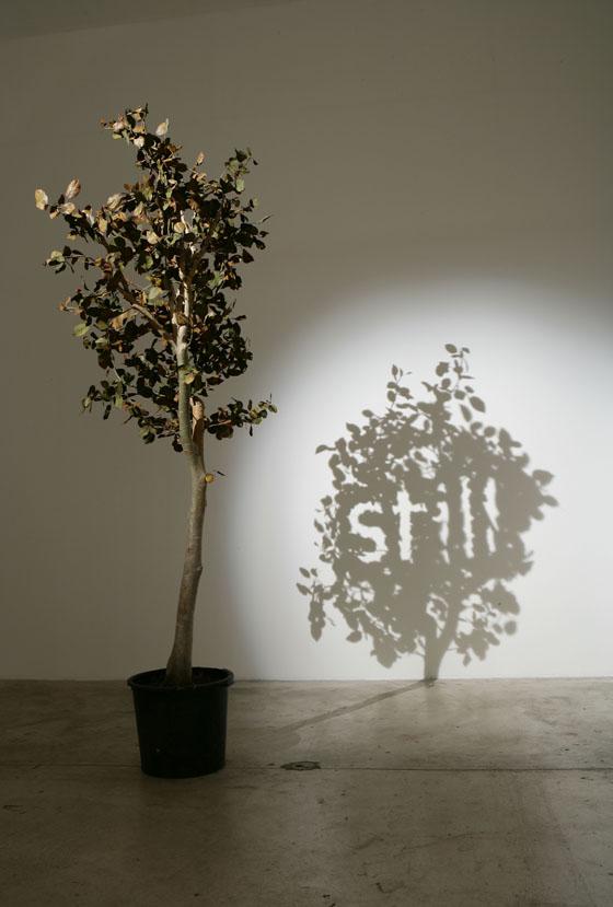 ART - Fred Eerdekens : l'artiste qui tord les mots (1/6)