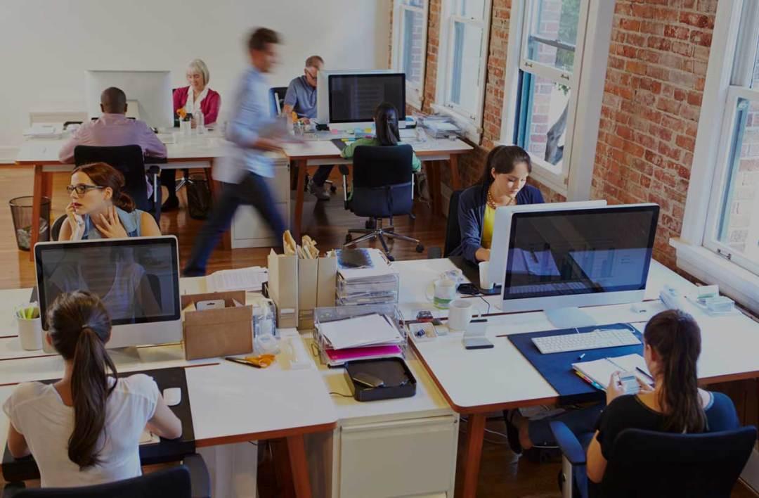 office staff working web agency