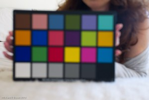 Colour Checker-2
