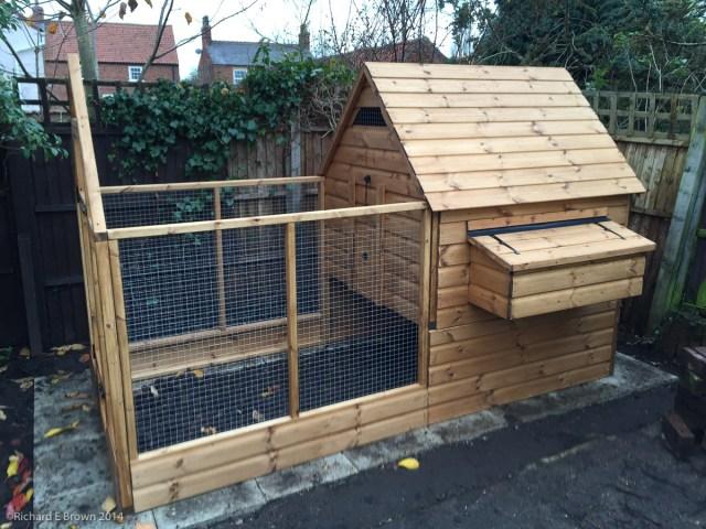 Garden Chickens Project-11