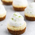 mini-key-lime-cheesecakes