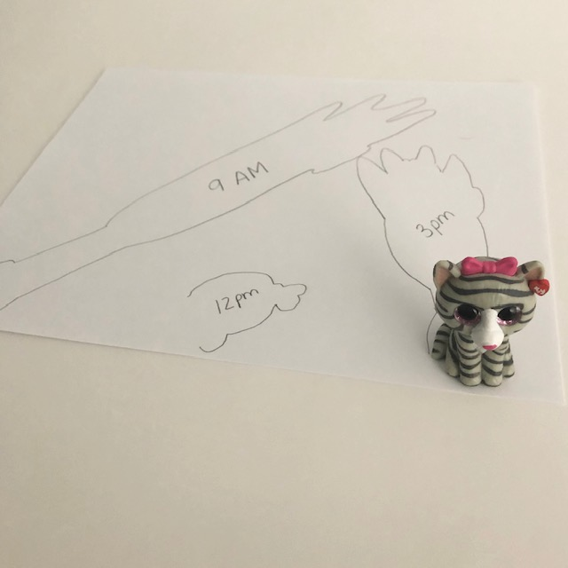 An idea for STEM Distance Learning at home. A small cat figurine placed on a white piece of paper. There are 3 outlines of the cat shadow displaying the size at 9 am, 12 pm, and 3 pm.