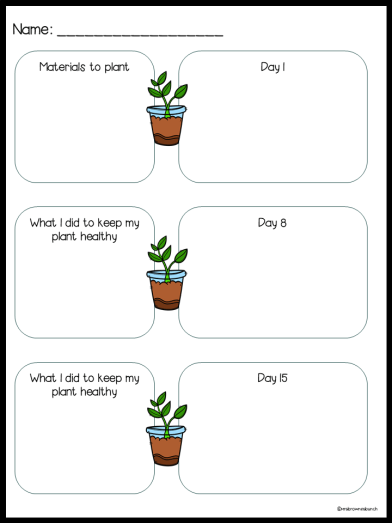 A worksheet with plant pictures on it. The first box asks for materials used during the experiment. The second box is used to draw a picture of the planted seeds. The second and third box on the left asks for what is being done to keep the plant growing. The right side continues to track the plants growth at Day 8 and Day 15.