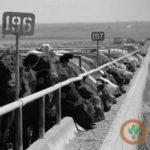 Cattle price discovery a priority for NE Farm Bureau