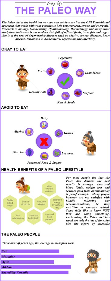 6 Paleo Diet Foods You Should Not Avoid, browngoodstalk.com