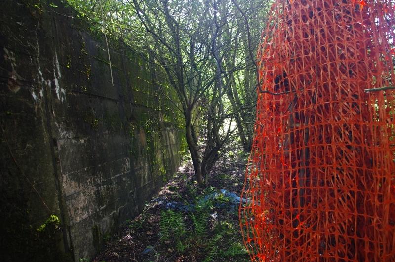 Wall 4. Note detritus from landfill of motorway excavation spoil.