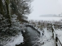 Footherly Brook looked beautiful in the white landscape.