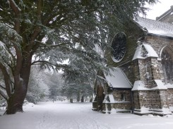 Shenstone Church and it's elderly Yews looked almost Bavarian.