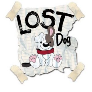 lost-dog-logo