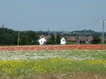 Overlooking Leomansley