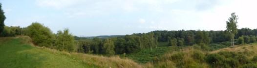 Wolseley Plain, Cannock Chase