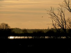Never noticed Lichfield Cathedral visible from Whitemore Haye before.