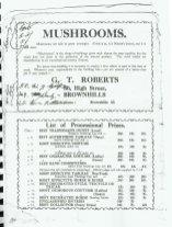Brownhills Carnival Program 1939_000018