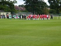 Brocton played in green