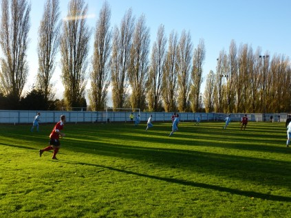 Sunlit soccer played on real grass.