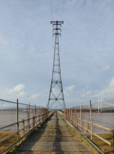 The pylons are very tall (to accommodate the sag, presumably) and sinister-looking.