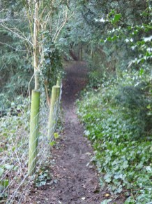 There's a steep path to the ford from the back of the church through the woods surrounding the grounds to Hints Hall. This is in the film I think.