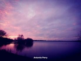 Antoniia Perry