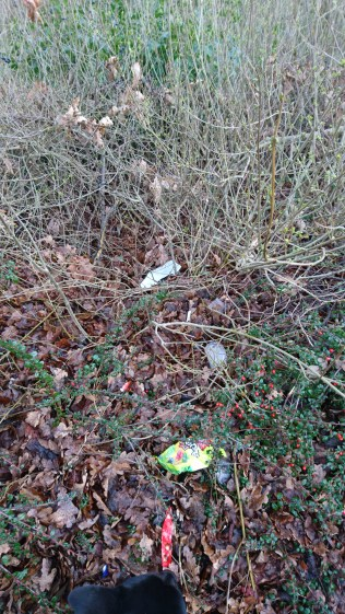 Litter in the co-op carpark. image madwblog