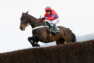 CHELTENHAM, UNITED KINGDOM - MARCH 13: Sprinter Sacre ridden by Barry Geraghty jumps a fence in the Racing Post Arkle Challenge Trophy Steeple Chase run during day one of the Cheltenham Festival at Cheltenham Racecourse on March 13, 2012 in Cheltenham, England. (Photo by Julian Finney/Getty Images)