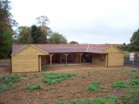 U-Shaped Stables