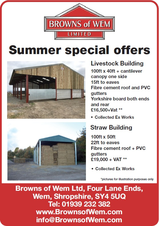 Summer Special Offers 2019