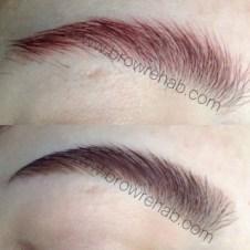 Brow Rehab | Eyebrow Color Correction