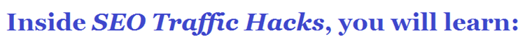Download Terry Kyle - SEO Traffic Hacks Webinars