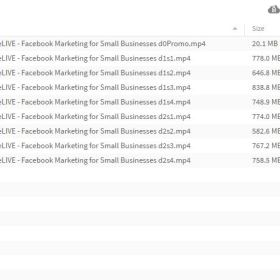 Download Nathan Latka - Facebook Marketing for Small Businesses