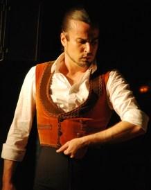 Flamenco Dancer - Leonardo Inspiration