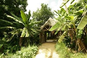 Hotel for Sale in Zanzibar