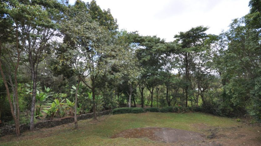 House With 7.5 Acres Border Arusha Nationak Park for Sale9