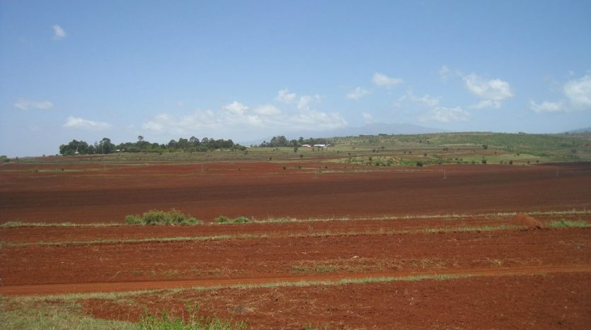 Potential Land For Sale In Karatu-Arusha Tanzania