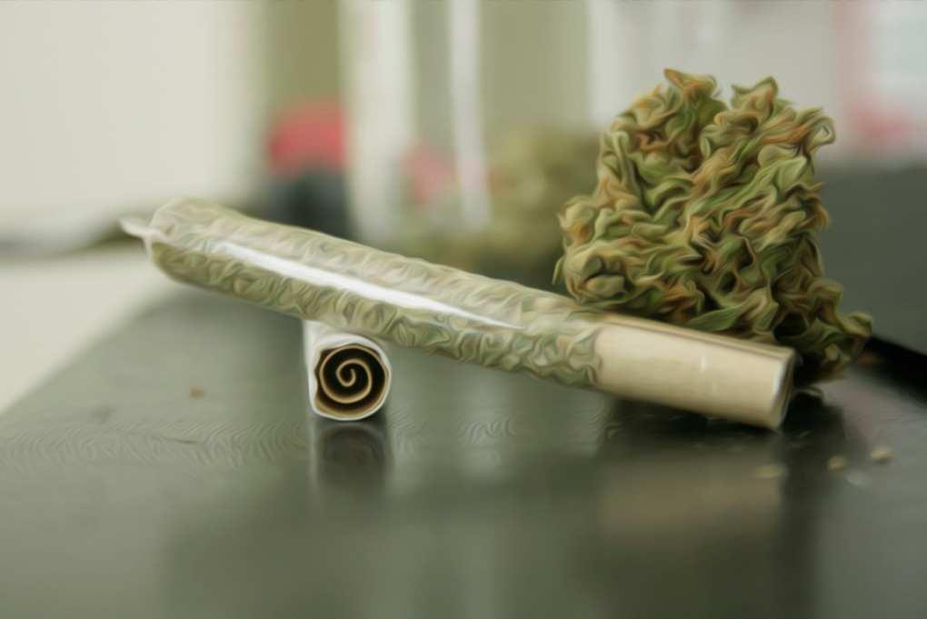 Todo sobre filtros para fumar hierba