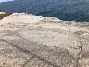 actual whale rock Tamarrama