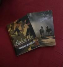 gavin book