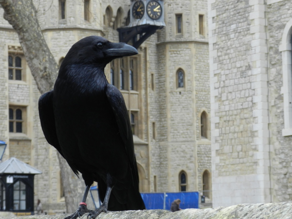 05_tower_of_london_35