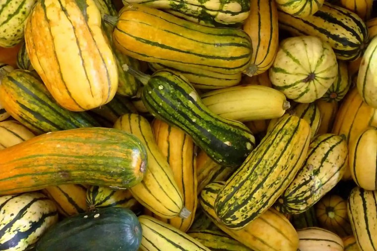 Delicata squash at the farmers market