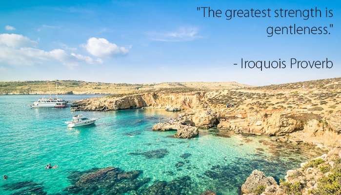 Iroquois Proverb