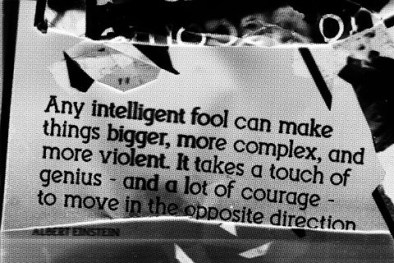 any intelligent fool