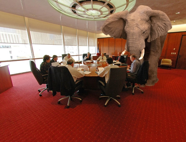 Image result for tHE ELEPHANT IN THE ROOM GIF